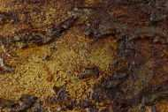 Detailaufnahme Modernes Gemälde aus echtem Rost Abstrakt starke Stuktur sehr modern expressionistisch