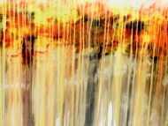 Detailaufnahme Abstraktes Acrylgemälde in orange gel weiß Fließtechnik helle Farben mediterran
